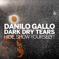 Danilo Gallo Dark Dry Tears